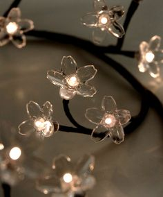 """36"""" Crystal Flower Lighted LED Branches Warm White Lights $18 - Battery Operated"""
