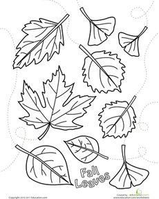 Autumn Leaves Coloring Page Worksheet  -outline the leaves with glue and used crushed, dry fall leaves to sprinkle onto the leaves with glue!  Great fall project!