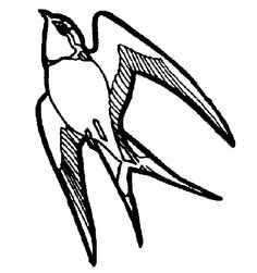 Bird Clipart Black And White