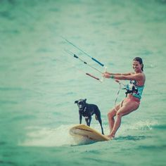 Summer kite surfing with the dog