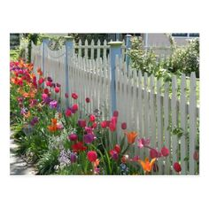 Picket Fence Garden, White Picket Fence, Garden Fencing, Picket Fence Decor, Picket Fences, Farm Fence, White Fence, Landscaping Along Fence, Backyard Fences