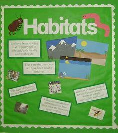 how to create fish habitat sont