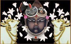 Traditional pichwai of shrinath ji with beautiful cows , wall decor, Indian art decor ,religious art Pichwai Paintings, African Art Paintings, Amazing Paintings, Mural Painting, Fabric Painting, Oil Painting On Canvas, Krishna Art, Krishna Images, Lord Krishna