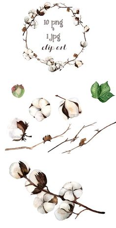 Flowers Watercolor Cotton Ideas For 2019 Watercolor Wallpaper, Wreath Watercolor, Watercolor Flowers, Watercolor Paintings, Flower Prints, Flower Art, Cotton Painting, Flora Flowers, Plant Illustration