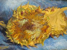 "Vincent van Gogh ""Sunflowers"" Metropolitan Museum New York by ohrenschuetzer, via Flickr"