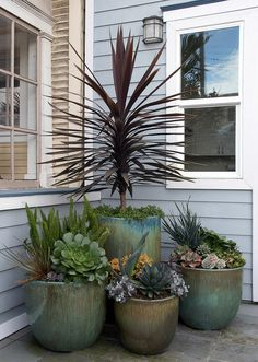 Garden Design Flora Grubb Gardens is a garden design shop in San Francisco's Bayview District. Flora Grubb offers a palette of beautiful, durable plants. - Learn more about the firm Flora Grubb Gardens based in Rustic Gardens, Outdoor Gardens, Outdoor Planters, Indoor Outdoor, Flora Grubb, Patio Plants, Potted Plants, Front Yard Landscaping, Landscaping Ideas