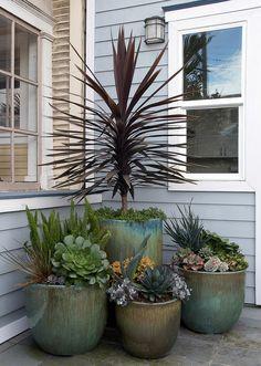 Flora Grubb Gardens is a garden design shop in San Francisco's Bayview District. Flora Grubb offers a palette of beautiful, durable plants.