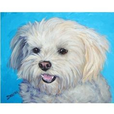 Items similar to Bichon Frise Dog Art Print of Original Painting by Dottie Dracos, Bichon on Purple on Etsy Animal Paintings, Animal Drawings, Drawing Animals, Maltese Dogs, Dog Tattoos, Dog Portraits, Little Dogs, Dog Art, Dog Life