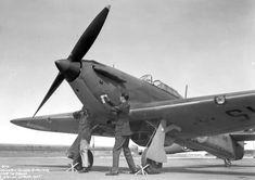 battle of britain hurricane Our World, World War Two, Home Guard, Hawker Hurricane, Cool Photos, Interesting Photos, Battle Of Britain, Ww2, Fighter Jets