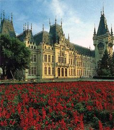 Iasi Romania Beautiful Scenery, Beautiful Places, Gothic Architecture, Barcelona Cathedral, My Photos, Around The Worlds, Country, Fun, Travel