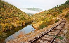 Places Around The World, Around The Worlds, Trekking, Douro, Railroad Tracks, The Good Place, Rio, Amazing Places, Lisbon Portugal