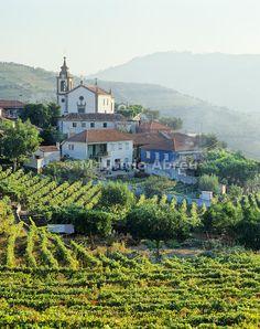 Vineyards at the little village of São Miguel de Lobrigos, on the world famous Port wine Douro region, a UNESCO World Heritage Site, Portugal   Mauricio Abreu, Images of Portugal