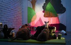 Stofftiere warten auf den Beginn der Vorstellung, die Bühne wird mit SPRIDA LED-Spot in Weiß/Schwarz beleuchtet