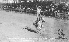 Throwback Thursday to this photo of 1992 Cowgirl Hall of Fame Honoree, Mabel Strickland Woodward, standing on a horse trick riding. Permanent Collection of the National Cowgirl Museum and Hall of Fame Cowgirl And Horse, Cowboy And Cowgirl, Horse Riding, Beautiful Horses, Beautiful Babies, Cowgirl Pictures, Cowgirl Photo, Trick Riding, I Love To Run