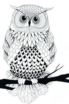 line art drawings - Bing images