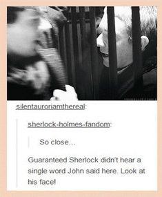 I would rightly kill someone just so Sherlock gets to the crime scene . - I would rightly kill someone just to get Sherlock to the crime scene … – THE BEST LOVE – - Sherlock Bbc, Sherlock Fandom, Jim Moriarty, Quotes Sherlock, Benedict Cumberbatch Sherlock, Watson Sherlock, Supernatural Fandom, Sherlock Humor, Sherlock Poster