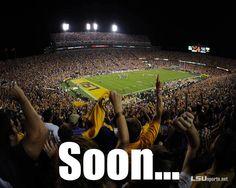 Cannot wait!