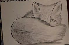 How to Draw a Baby Fox Video-Time Lapse- Awesome Pencil Drawing-ZArtwork Fox Video, Cool Pencil Drawings, Dragon Eye, Cute Babies, Awesome, Baby, Painting, Painting Art, Newborns