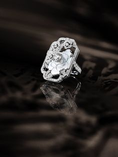 Other Rings Ladies Silver Cz Ring Rich In Poetic And Pictorial Splendor
