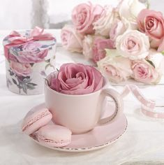 Pink Roses, Pink Flowers, Pretty In Pink, Beautiful Flowers, Frühling Wallpaper, Tout Rose, Rose Cottage, Everything Pink, Coffee Love