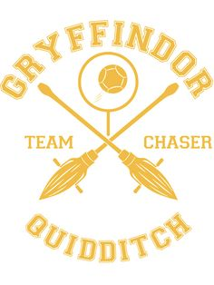9 Gryffindor Quidditch Ideas Quidditch Gryffindor Harry Potter