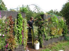 Another vertical garden idea