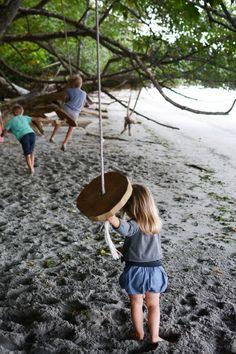 Rope swings on Bainbridge island