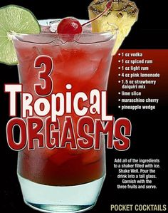 Millions of People Enjoy Pocket Cocktails. Check out our World Famous Drink Posters. Christmas Drinks, Holiday Drinks, Summer Drinks, Mixed Drinks Alcohol, Alcohol Drink Recipes, Liquor Drinks, Cocktail Drinks, Bourbon Drinks, Craft Cocktails