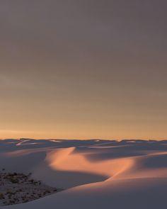 Everything the sun touched turned to gold. White Sands National Monument [4563x3650]. #nature and Science