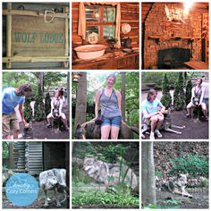 Cleveland Zoo Wolf Lodge