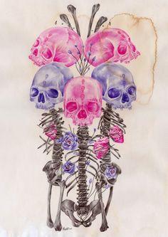 bunch of skulls