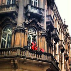 rafagushi:  ☔ ••• DETALHES Instrumentos clássicos expostos na varanda de prédio histórico do centrão ••• Foto por @milderes Use #spdagaroa o...
