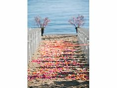 Anna And Dan S Hyatt Incline Village Wedding Weddings Just For Fun Pinterest