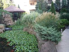 Rooms For Rent, Bucharest, Stepping Stones, Real Estate, Building, Outdoor Decor, Plants, Modern, Beautiful