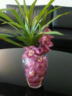 22- Orquídea Cymbidium com Dracena