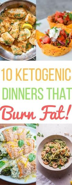 10 Tasty Ketogenic Dinners Recipes Ideas Low Carb Keto Diet Healthy Food Family Easy Quick Dinner