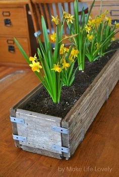 Cozy Rustic Wood Planter Box Rustic Wood Planter Box - This Cozy Rustic Wood Planter Box images was upload on January, 10 2020 by admin. Here latest Rustic Wood Planter Box images. Diy Wood Planter Box, Rustic Planters, Window Planters, Diy Planters, Planter Ideas, Pallet Planters, Long Planter Boxes, Indoor Planter Box, Planters Flowers