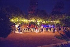 Reception dinner under the Orange Groves.  royalpalmshotel.com