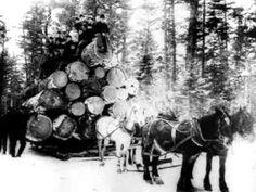 Métiers d'autrefois - Les métiers de la forêt