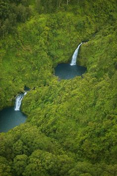Honokohau Falls in Hawaii  is said to be the tallest waterfall on Maui. It plunges in two tiers for a total of 1600 feet, making it the second highest falls in the United States