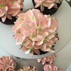 Hydrangea cupcakes Hydrangea Cupcakes, Succulents, Plants, Recipes, Recipies, Succulent Plants, Plant, Ripped Recipes, Cooking Recipes
