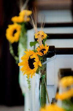 Sunflowers On Church Pews
