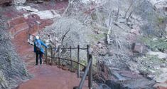 Zion National Park Itinerary for All Ages   Utah.com