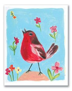 CARDS :: Boxed Notes & Invitations :: Red Robin note cards - Ecojot - eco savvy paper products