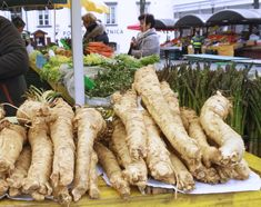 Easy Steps to Grow Your Own Horseradish - One Green Planet - My site French Dishes, French Food, Seafood Recipes, Keto Recipes, Edible Seaweed, Fresh Horseradish, Seafood Cocktail, One Green Planet, French Kitchen