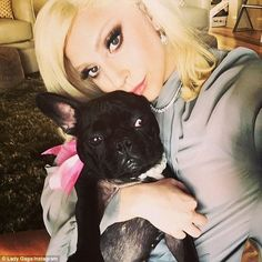 With her loved one: Lady Gaga shared a selfie with her French bulldog Asia on her Instagram account on Friday