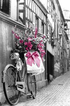 Roze bloemen Poster bij AllPosters.nl