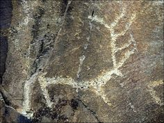 Thousands of rock paintings make remote area the world's best place to see 5,000 year old alfresco art
