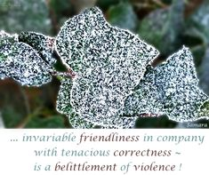 ... invariable #friendliness in company with tenacious #correctness ~ is a #belittlement of #violence !