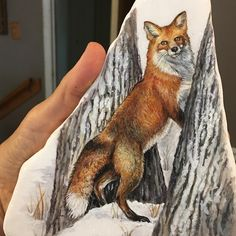 Fox🌠 One of my favorite North American animals. North American Animals, Rock Decor, Rock Painting Designs, Stone Art, Stone Painting, Rock Art, Painted Rocks, Animals And Pets, Deer